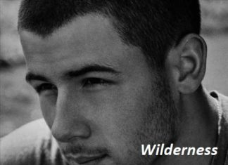 Wilderness Song Lyrics